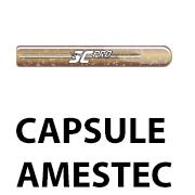 Ancore chimice tip capsula pentru fixarea tijelor filetate in beton sau piatra